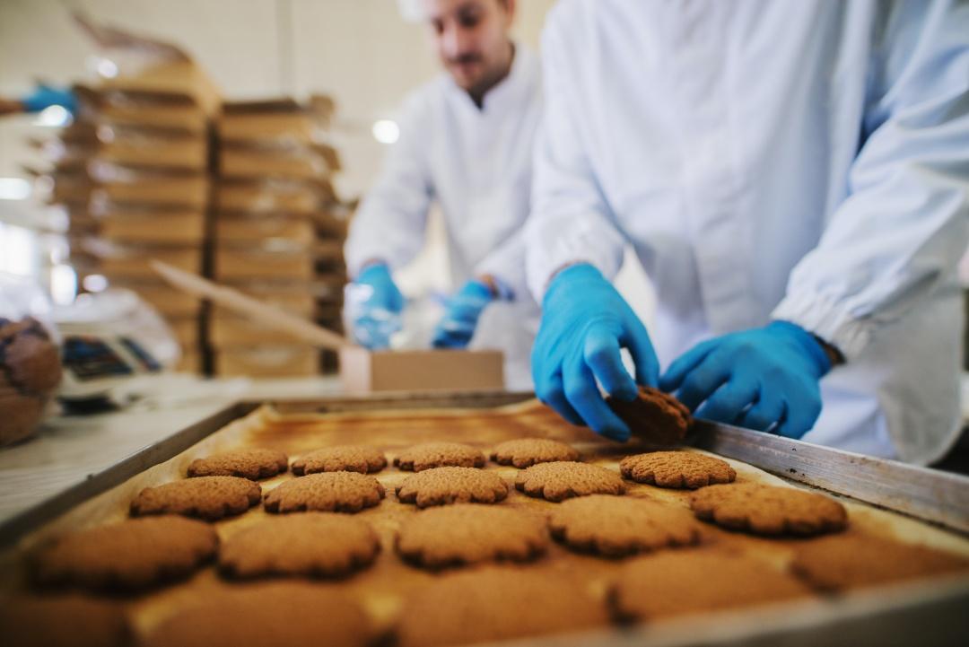 Food factory scene